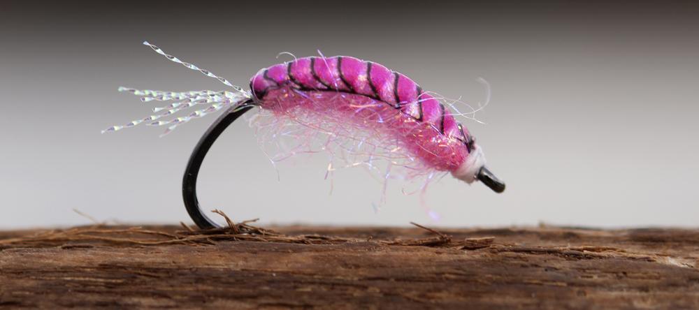 Pink Gammarus tied by Morten Valeur on NS172