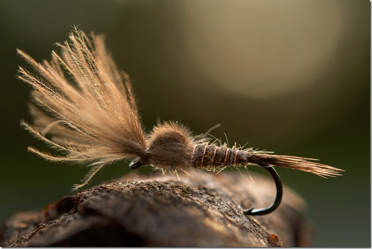 March Brown Emerger by John Rasmussen-03