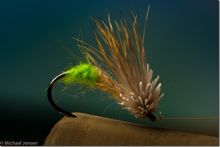 Egglaying Caddis - tied by Michael Jensen (1 of 1)