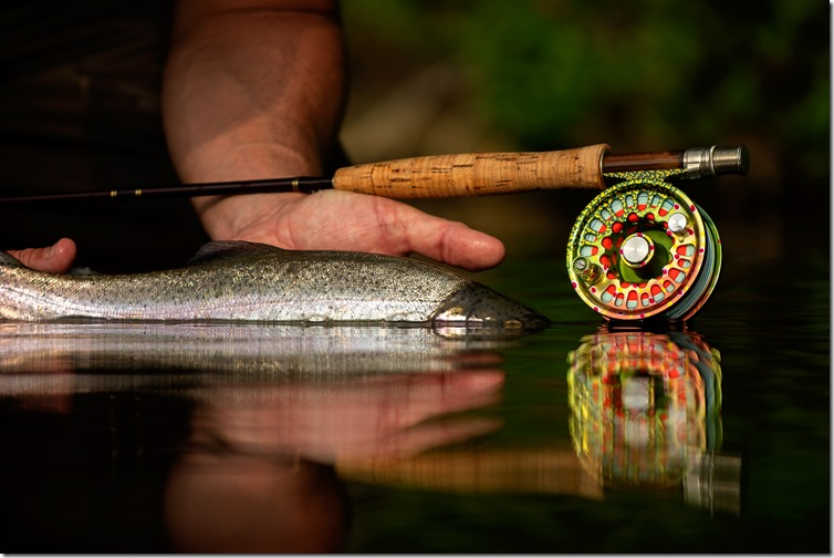 Rainbow Trout & Able Reel-02
