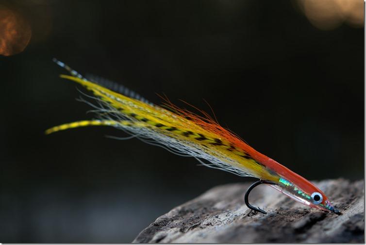 Orange & Yellow Eel by We X Waters-03