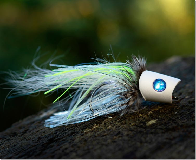 Blue Eyed White Popper by William MacDonald - Get Fly Bass-01