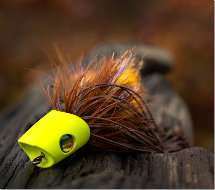 Brown & Yellow Popper by William MacDonald - Get Fly Bass-03