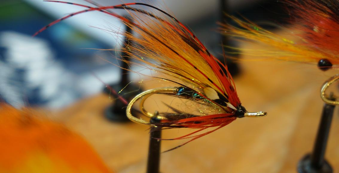 10_Owens shrimp