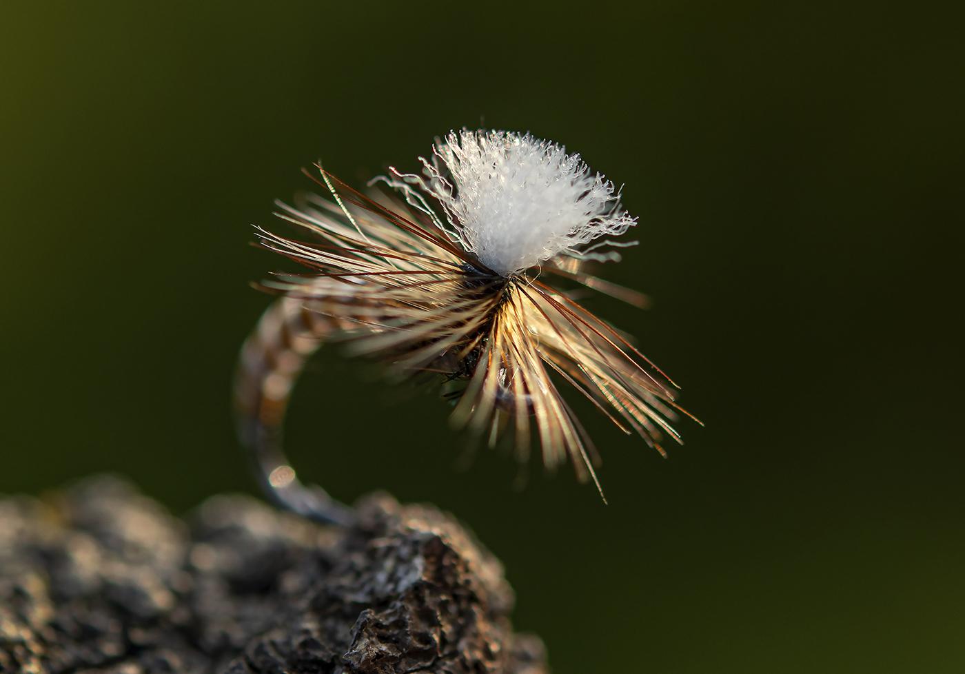 Brown Bodied Parachute by Jan de Haas-03